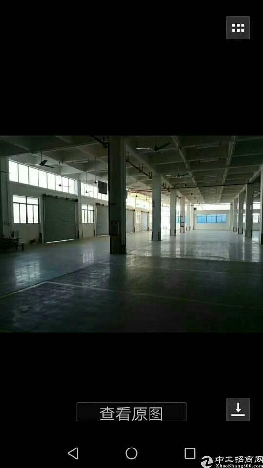石碣标准厂房1-3层,每层3370一楼高5迷,2-3楼4米位-图2