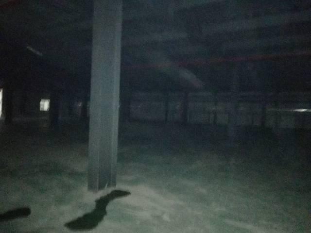 清溪原房东独院钢构厂房6500平米-图6