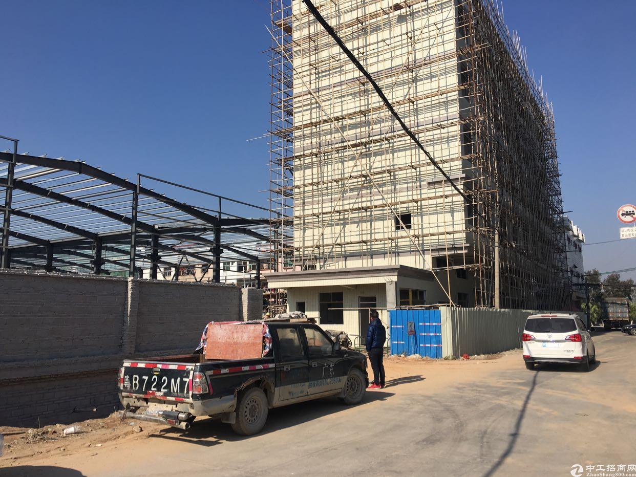 东莞东部新出独院全新10米钢构厂房出租