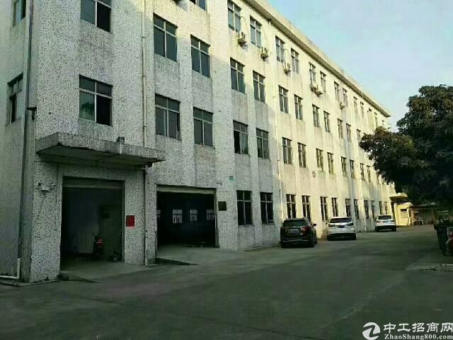 福永凤凰107国道边上新出独门独院6000厂房出租