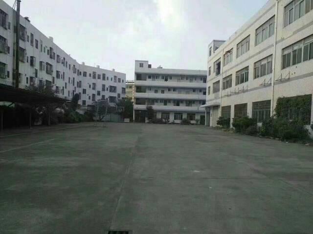 龙华大浪商业中心附近独院1-3层6600平方招租可分租