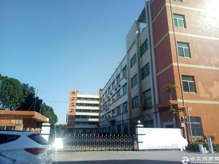 凤岗镇龙平路边标准厂房1-2层各1350平方米出租