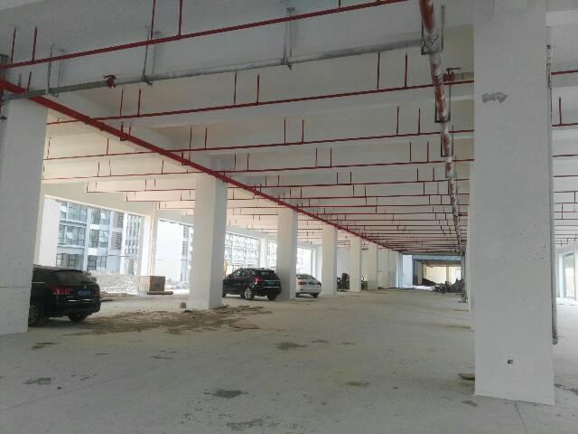 惠州新圩新出独院标准厂房出租