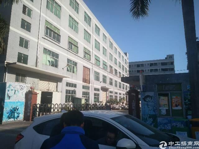 龙岗坪地一楼6米高独院标准厂房出租10000平