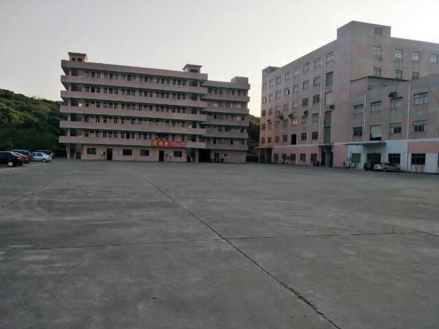 清溪镇超大空地一楼厂房2100平方招租可分租