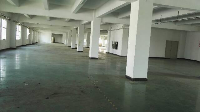 松岗燕川燕山大道原房东独院3600平方实际面积出租空地大-图3