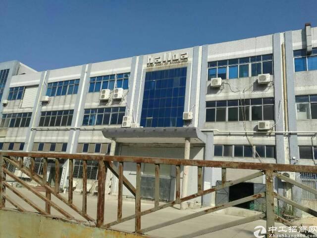 西部1到3层独院厂房1100平方