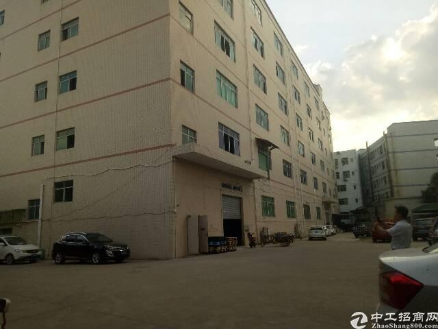 【原房东】坪地龙岗大道边2楼整层1500平米