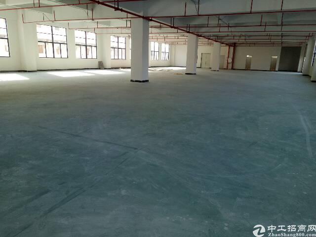 1000平米全新厂房出租