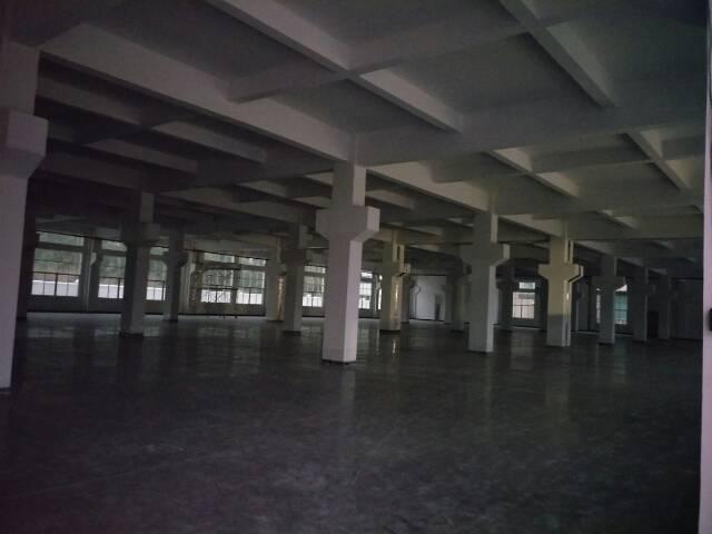 石排一楼厂房2000平方出租