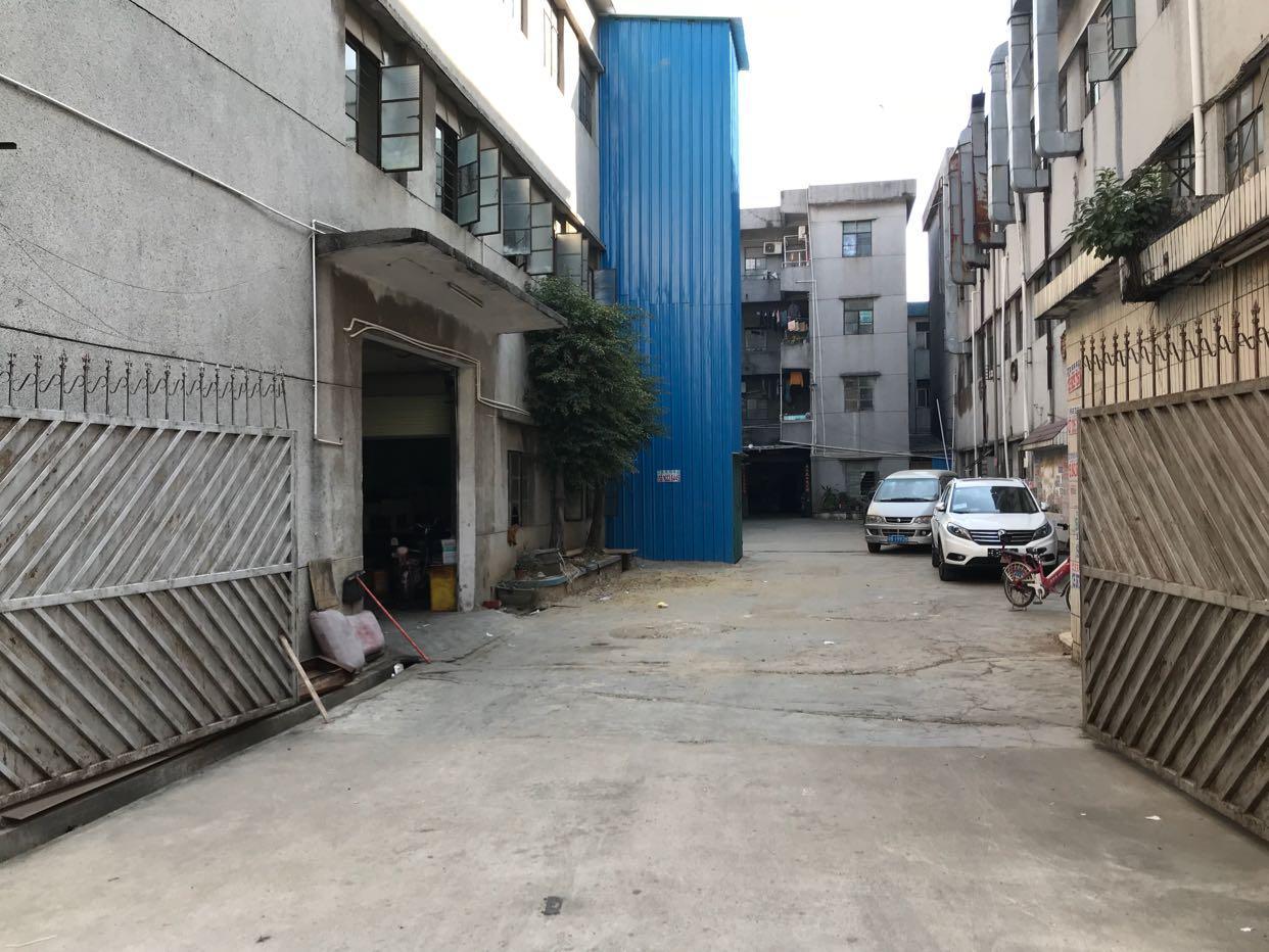 东莞市凤岗镇油甘埔