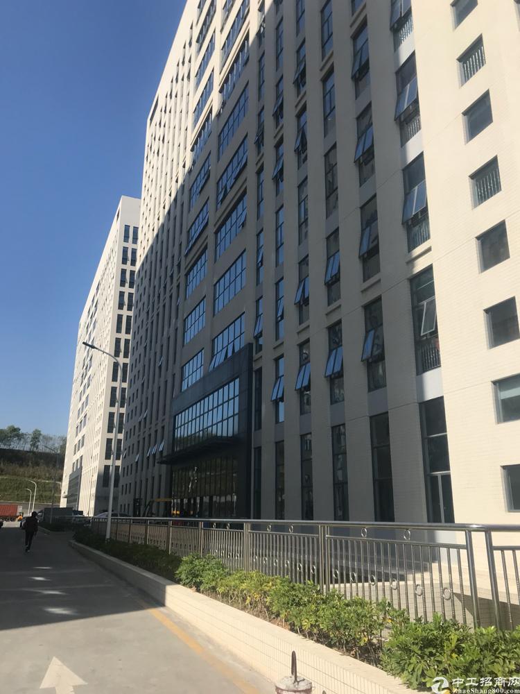 龙华汽车站附近原房东厂房450租22块面积实在,