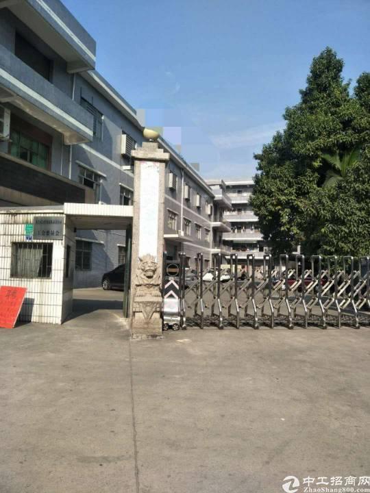 企石镇原房东独院标准厂房3800平方