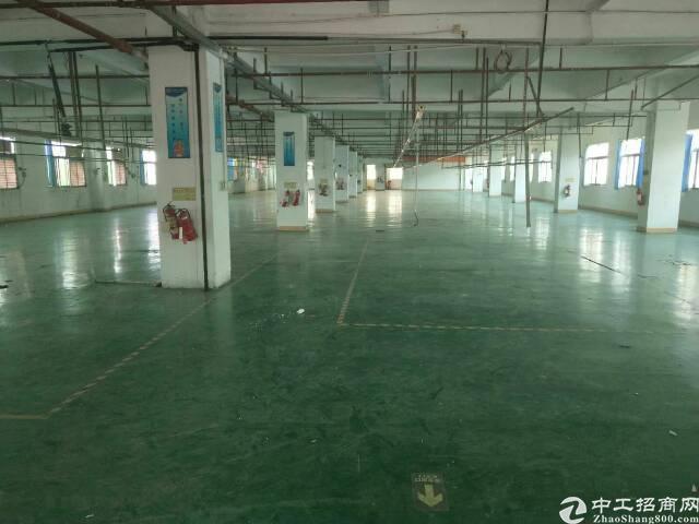 虎门镇小捷滘村花园式厂房分租一层1800平方招租