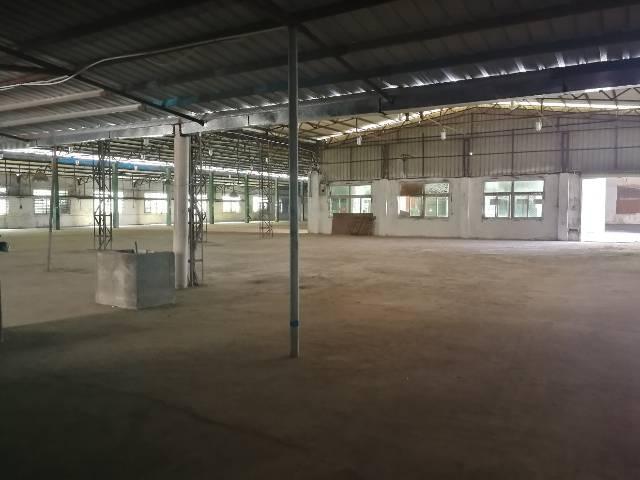 坪地新出标准钢构厂房4000平米