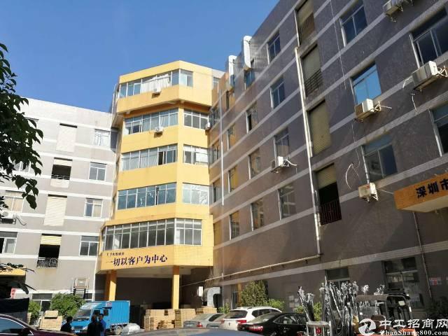 深圳市布吉2700平米出售红本房产证-图3