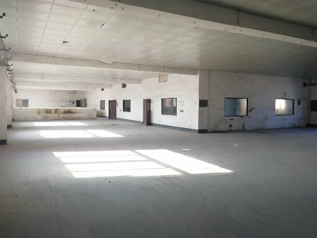 坪地北通道边标准厂房楼上现成办公室1400平