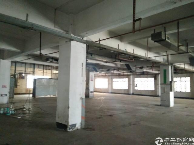 虎门镇北栅一楼800平厂房出租