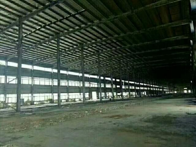 惠州6万平米独院钢构出租!空地超大3万平米!