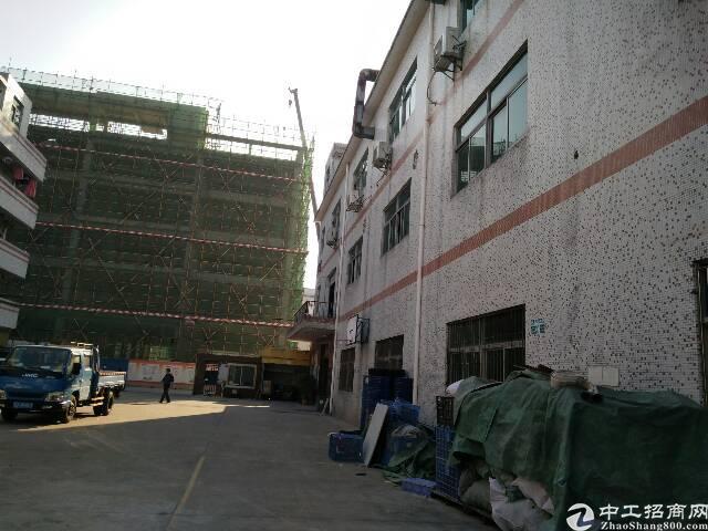 坪山新区坑梓老坑新出标准厂房一楼500平米招租