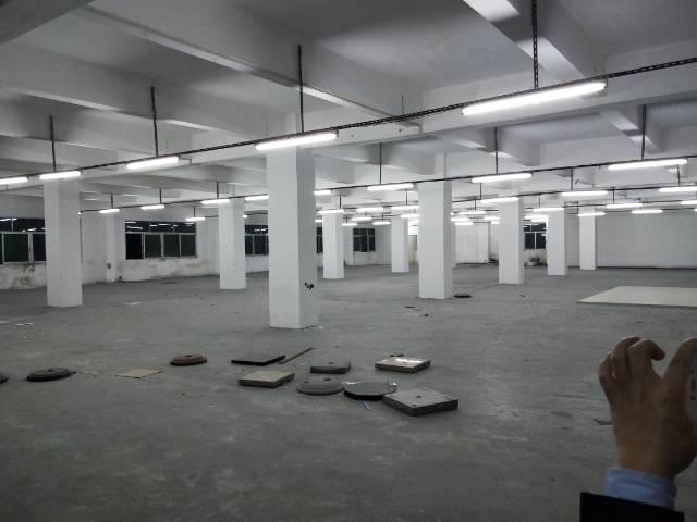 观澜牛湖家具之城厂房招租