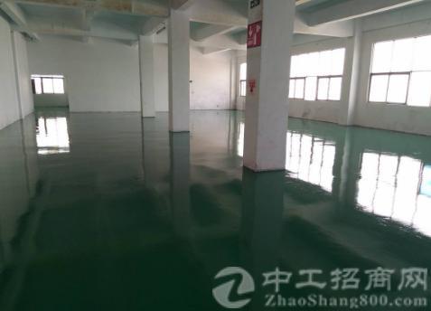 沙井庄村新发东路新出楼上500平米带装修厂房出租