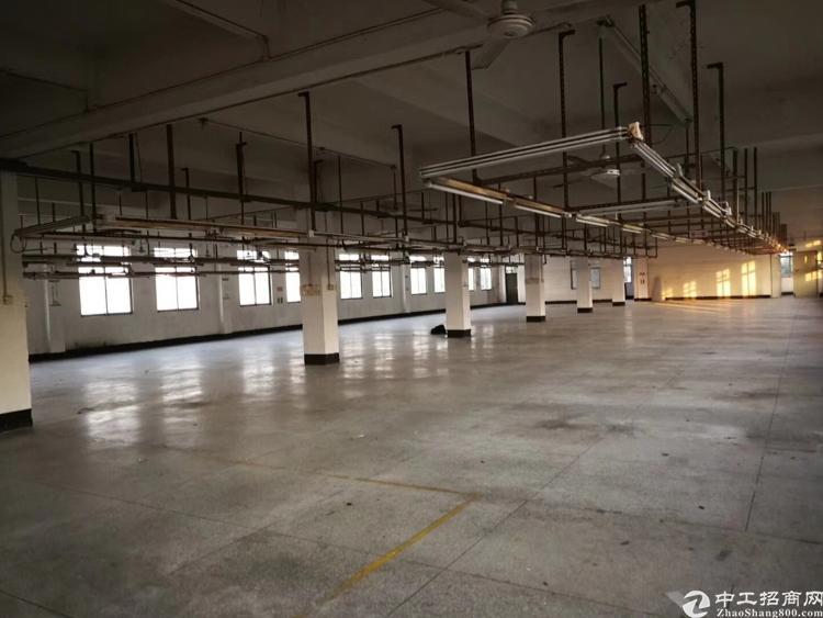 福永凤凰山整栋6000平米,可分租