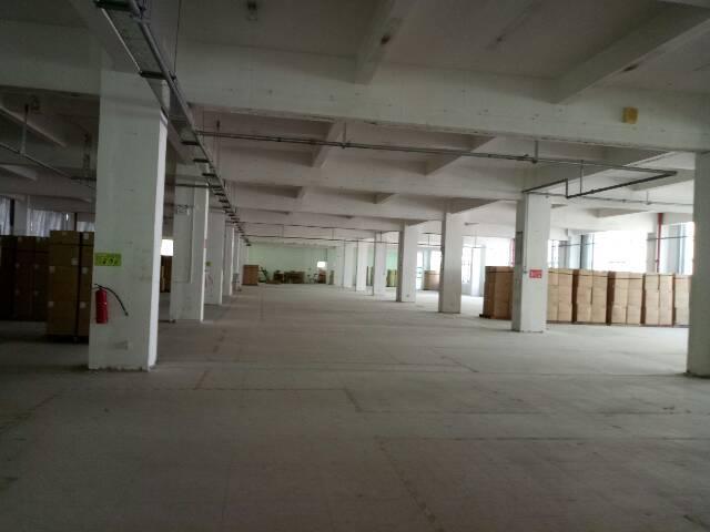 黄埔原房东厂房二楼2450平方-图3