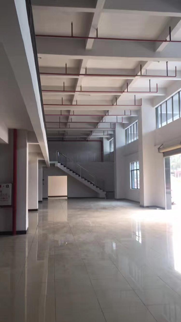 新建厂房一楼出租