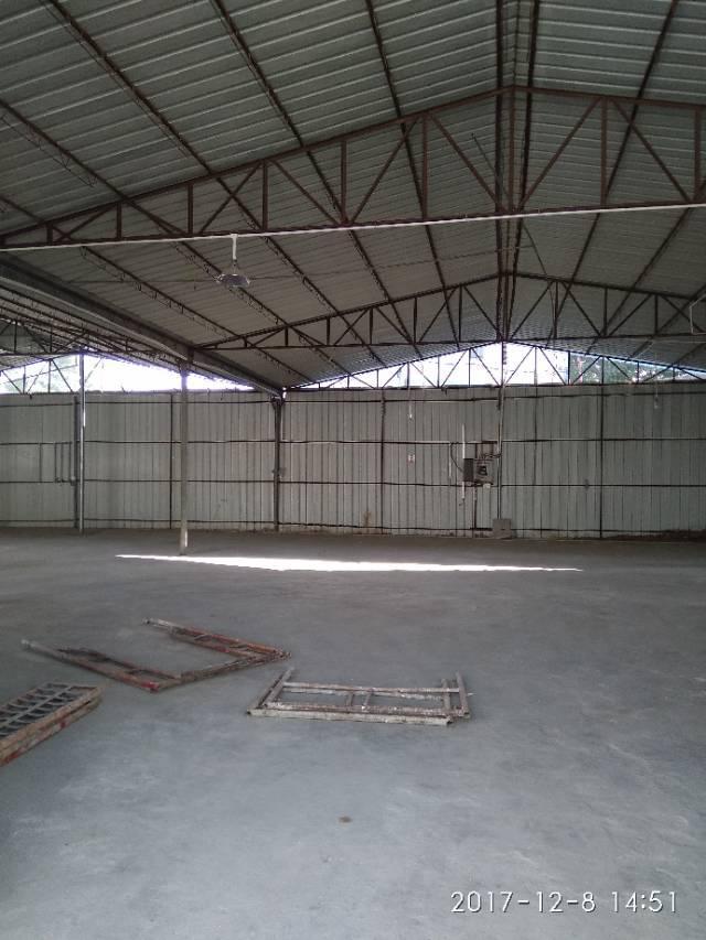 坪地教育路旁新出独院钢构厂房