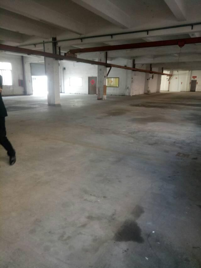 龙岗龙东现成行车一楼1400平方出租