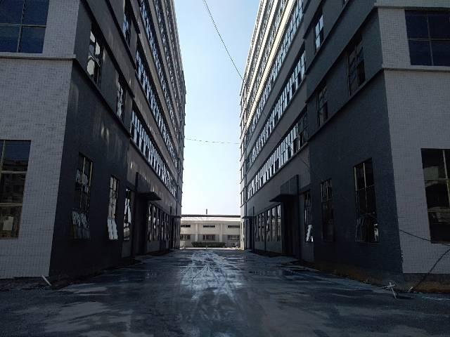 新建标准独院厂房分租