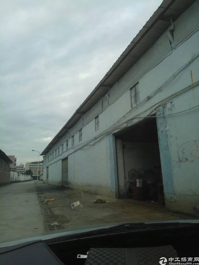 虎门独院单层滴水12米单一层钢结构一楼厂房8000平米原房东
