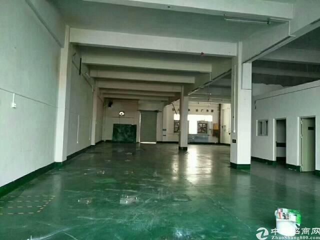松岗燕川原房东一楼560平厂房,高6米,地坪漆
