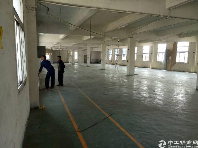 松岗镇中心独院三层3800平方电315千瓦