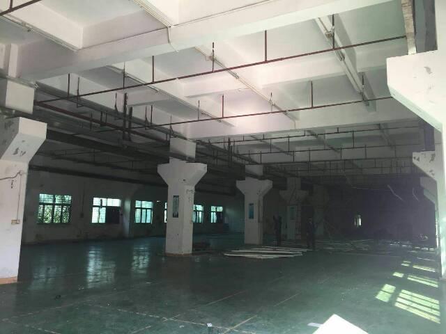 虎门镇南栅村五区独院厂房分租一楼带牛角1750平方招租