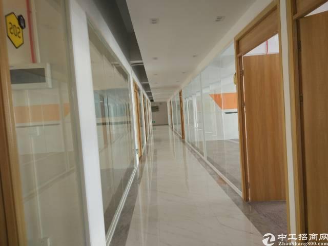 清湖精装修办公室50-300