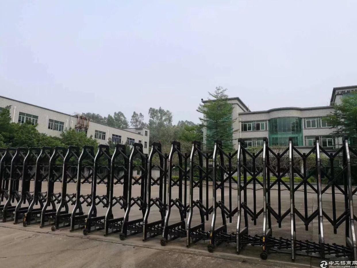 花园式带红本独门独院厂房16000平米一手业主直招