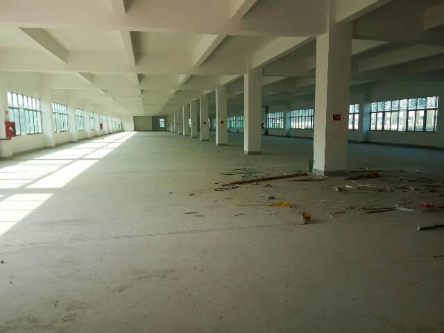 平湖新出独院10000平米可做教育机构厂房出租