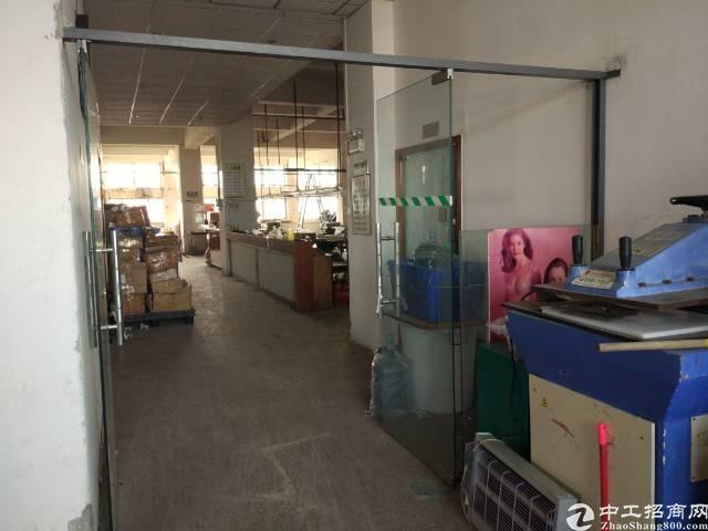 虎门龙眼现成装修办公室制衣厂 独门独院1500平方 11元
