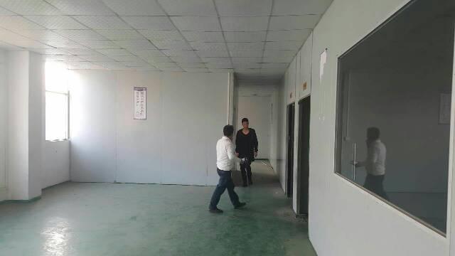 大岭山新出标准厂房三楼1100平方,现成办公室装修