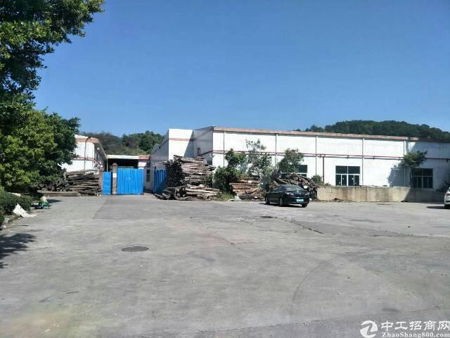 龙岗大道边钢构厂房5600平米