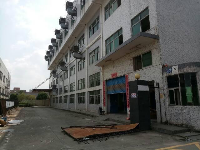 平湖高速出口新出4500平方独院厂房出租