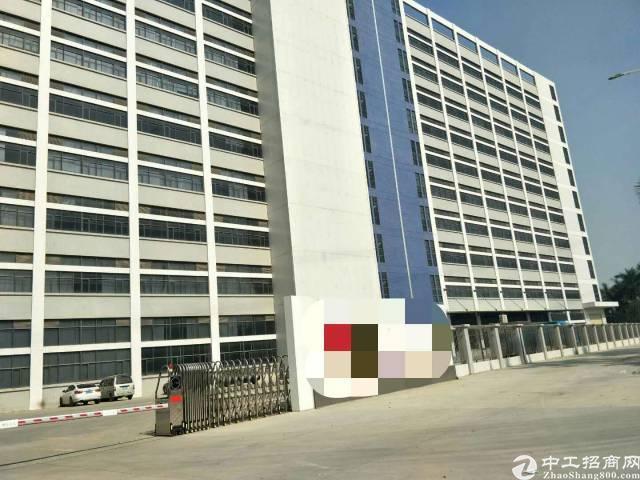 沙井新桥高速入口全新厂房招租1~10层2万平方,可分组