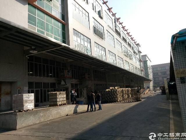 黄埔原房东厂房二楼2450平方-图2