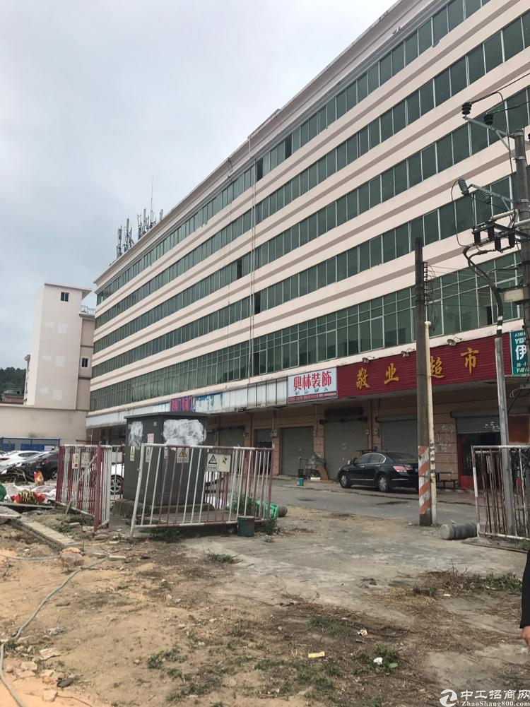 横岗新出一楼930平层高六米带红本消防喷淋-图3