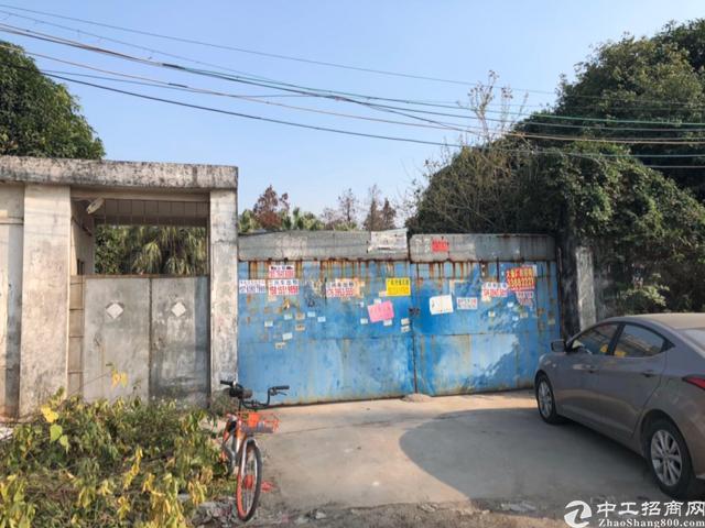 万江原房东独门独院单一层带牛角厂房