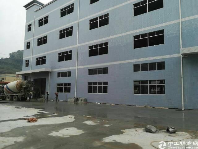 广州新塘全新独栋厂房8400平方招租可分租-图4
