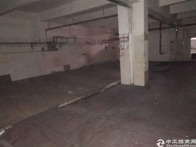 大岭山镇南区工业园内单一层1200平方标准厂房出租