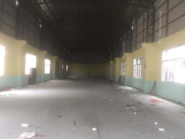茶山新空出独门独院厂房2500方,重点是原房东